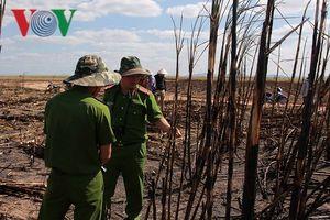 Đắk Lắk: Điều tra nguyên nhân cháy hơn 100 ha mía