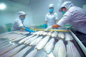 'Vua cá tra' lên tiếng việc lệch gần chục tỷ đồng sau kiểm toán