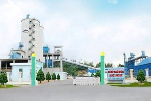 Giải quyết một số vấn đề liên quan đến Nhà máy Xi măng Đại Việt-Dung Quất