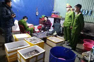 Công an Hải Phòng thông tin vụ bơm tạp chất vào tôm