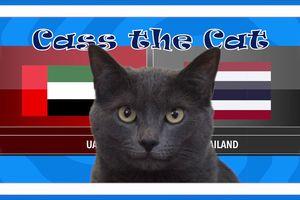 Mèo Cass 'tiên tri' kết quả trận Thái Lan vs UAE tại ASIAN CUP 2019 hôm nay