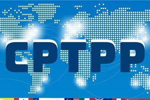 CPTPP chính thức có hiệu lực với Việt Nam từ ngày hôm nay 14/01/2019