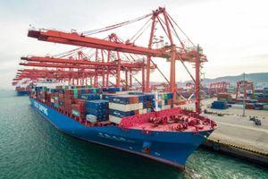 Thặng dư thương mại toàn cầu của Trung Quốc suy giảm trong năm 2018