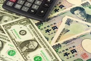 Một người Việt bị bắt tại Nhật vì chuyển trái phép 21 triệu USD