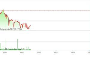 Chứng khoán sáng 14/1: Thanh khoản xuống dốc, VN-Index mất mốc 900