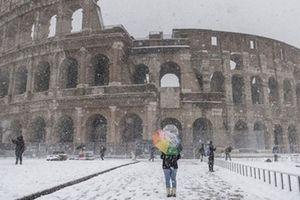 Băng tuyết hoành hành, làm đảo lộn cuộc sống người dân khắp Âu-Mỹ