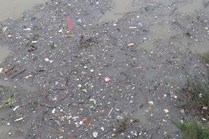 Củi rác trôi kín mặt Sông Hồng những ngày cuối năm