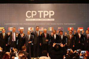 Hội đồng CPTPP họp phiên đầu tiên tại Tokyo, Nhật Bản vào ngày 19-1