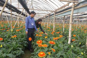 Hà Nội: 3 xã đạt nông thôn mới nâng cao đợt đầu tiên
