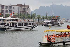 Quảng Ninh: Phát hiện một số phương tiện tàu thủy chở khách 'chui'