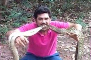 Kinh hãi người đàn ông ngậm 4 con rắn chuông kịch độc trong miệng