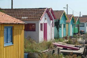 Hớn hở đến Oleron ở Pháp - Hòn đảo chưa tour du lịch Việt Nam nào khai thác