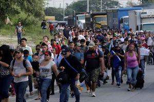 Hàng trăm người Honduras rời bỏ quê hương di cư đến Mỹ