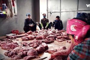 Tiêu thụ thịt, nội tạng heo nhiễm bệnh: Phải quy đó là hành vi giết người