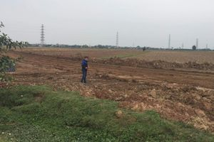 Hải Dương: Lợi dụng dồn điền, đổi thửa bán đất nông nghiệp cho lò gạch
