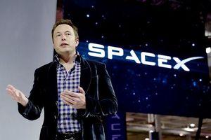 SpaceX của Elon Musk sa thải 10% nhân sự