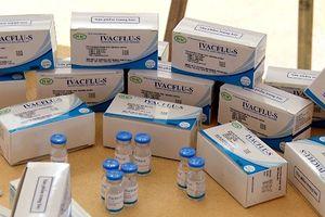 Lưu hành sản phẩm vaccine cúm mùa '3 trong 1' IVACFLU-S