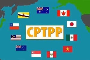 Cần tăng khả năng cạnh tranh nếu muốn thụ hưởng thuận lợi của CPTTP