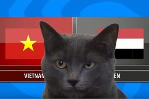 Clip: Mèo Cass dự đoán tuyển Việt Nam sẽ hạ Yemen trong trận đấu tối nay