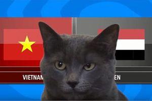 CLIP: Mèo tiên tri dự đoán bất ngờ về kết quả trận Việt Nam vs Yemen