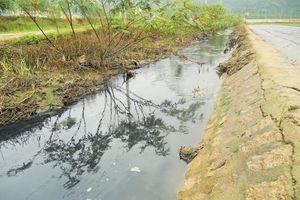 TP Quy Nhơn: Người dân phường Trần Quang Diệu 'kêu trời' vì ô nhiễm môi trường