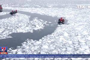 Băng ở Nam cực tan nhanh kỷ lục