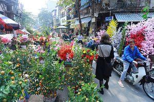 Hà Nội có 64 chợ hoa Xuân phục vụ Tết Nguyên đán Kỷ Hợi 2019
