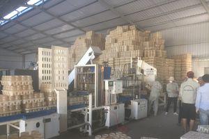 Đầu tư công nghệ cao nâng sản lượng nấm ăn, nấm dược liệu
