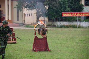 Tập huấn PCTT-TKCN, huấn luyện điều lệnh, võ thuật và kỹ thuật chiến đấu bộ binh