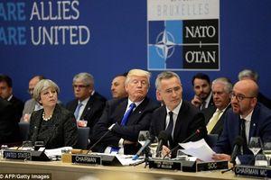 Trump khiến đồng minh NATO run sợ, Nga 'vui như mở cờ'