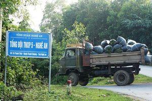 Dự án Làng TNLN sông Rộ: Dân trồng rừng tố bị thu hồi đất vô lí