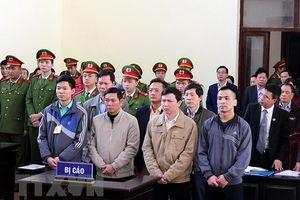 Xét xử vụ chạy thận Hòa Bình: Luật sư 'chất vấn' ông Hoàng Đình Khiếu