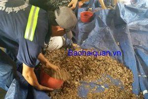 Hải quan TPHCM: Khởi tố 10 vụ buôn lậu