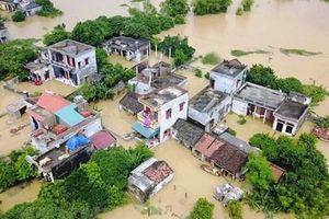 Xây dựng 1.380 ngôi nhà an toàn và tái sinh 1.386 ha rừng ngập mặn
