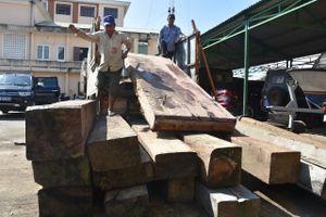 Đà Nẵng, Quảng Nam liên tiếp bắt gỗ lậu trên đường bộ, đường sông