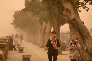 Bão cát dữ dội tấn công các thành phố và cảng của Ai Cập