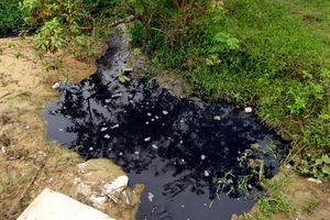 Vụ dân bức xúc vì nhà máy đường gây ô nhiễm: Lãnh đạo Nhà máy khẳng định nước hôi thối màu đen là do tro?