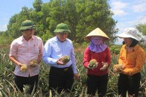 Xây dựng Cam Lộ trở thành huyện đầu tiên của Quảng Trị đạt chuẩn nông thôn mới
