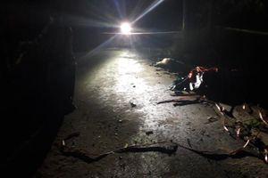 Nam thanh niên chết bên lề đường ở Bình Dương