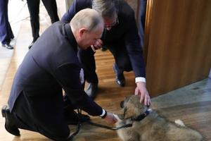 Tổng thống Nga thích thú với món quà đặc biệt của Tổng thống Serbia tặng