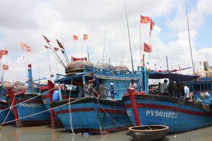 Phú Yên: Tiếp tục thực hiện các giải pháp khắc phục 'thẻ vàng' của EC