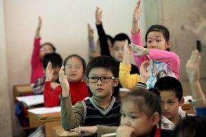 Nhà quản lý sôi nổi góp ý xét chọn giáo viên giỏi