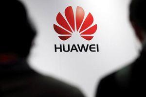 Đức, Mỹ tiếp tục gây sức ép với Huawei