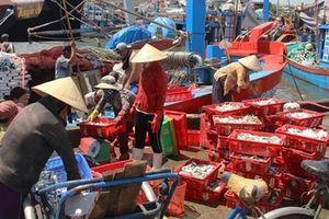 Ngư dân miền Trung vươn khơi bám biển những ngày cuối năm