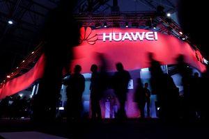 Lo ngại an ninh, Đức cân nhắc cấm sử dụng sản phẩm Huawei trong xây dựng 5G