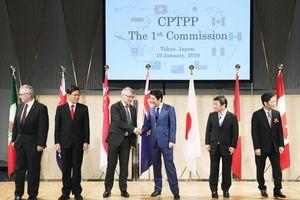 Lễ công bố Hiệp định CPTPP chính thức có hiệu lực