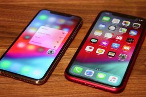 'Ngày đen tối' của đế chế iPhone đã bắt đầu