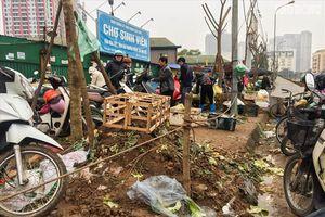 Hà Nội: Sớm dừng hoạt động và giải tỏa chợ Sinh viên
