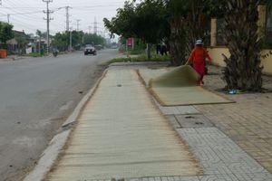 Chiếu Long Cang từ làng quê ra quốc tế