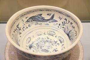 Chiêm ngưỡng báu vật đại dương hàng trăm năm tuổi